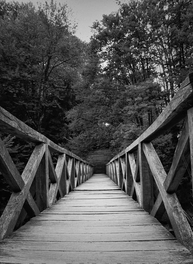 Zwart-witte Mening van een houten brug bij zonsondergang royalty-vrije stock fotografie
