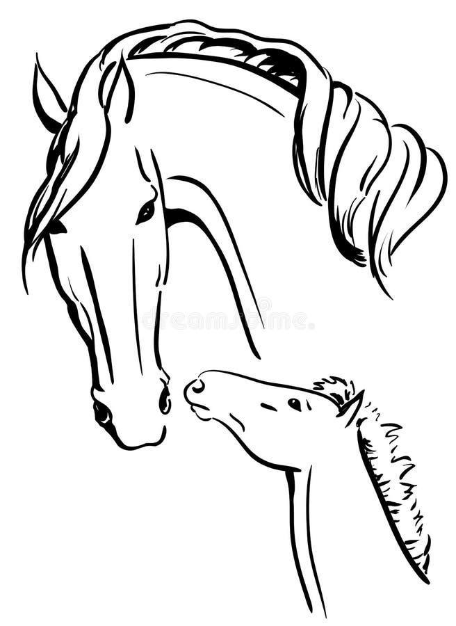 Zwart Witte Merrie En Veulen Vector Illustratie