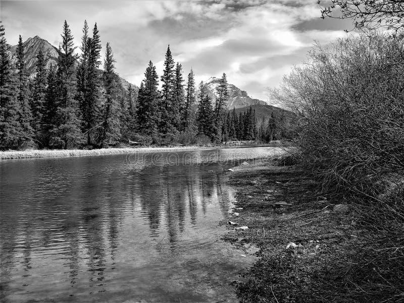 Zwart-witte oflberg in Banff Alberta royalty-vrije stock afbeelding