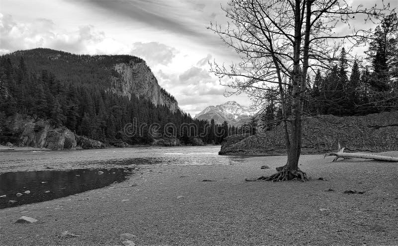 Zwart-witte oflberg in Banff Alberta royalty-vrije stock afbeeldingen