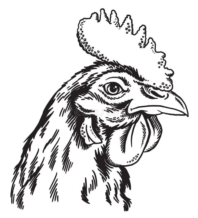 Zwart-witte schets van het gezicht van een kip vector illustratie