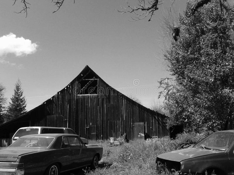 Zwart-witte schuur stock foto