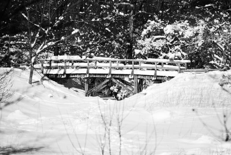 Zwart-witte sneeuwscène met brug stock foto