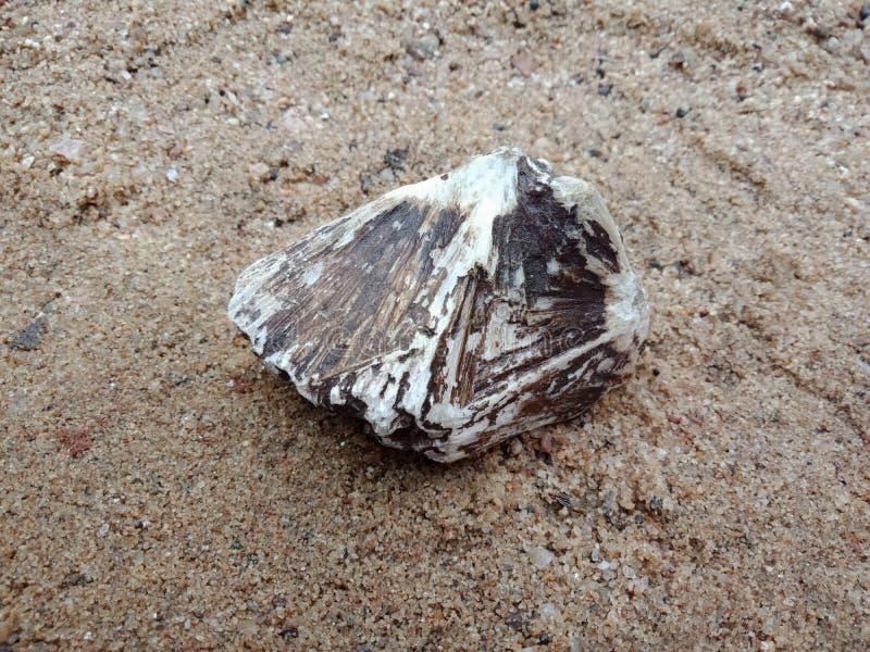 Zwart-witte steen met textuur op het zand geweven behang als achtergrond, strand Oceaan stock afbeeldingen