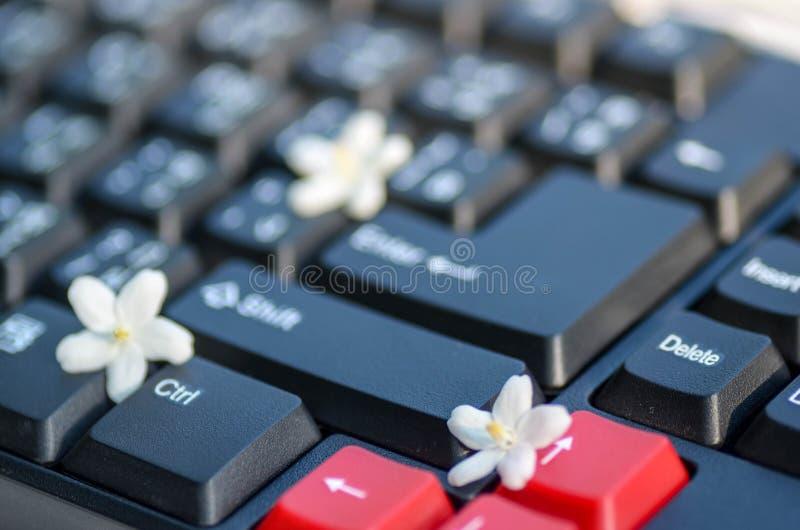 Zwart-witte toetsenbordsleutel met uiterst kleine witte bloem royalty-vrije stock afbeeldingen