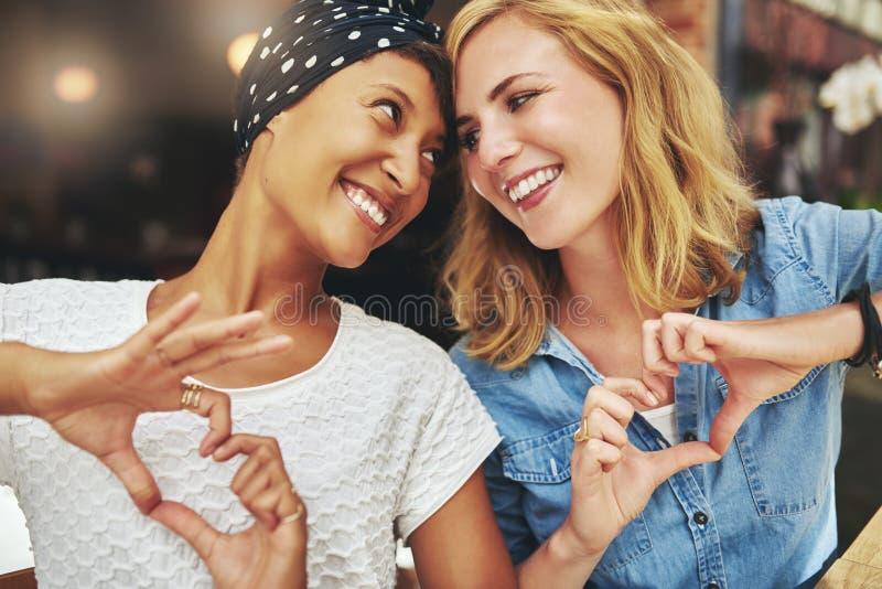 Zwart-witte vrouwen, beste vrienden royalty-vrije stock foto's