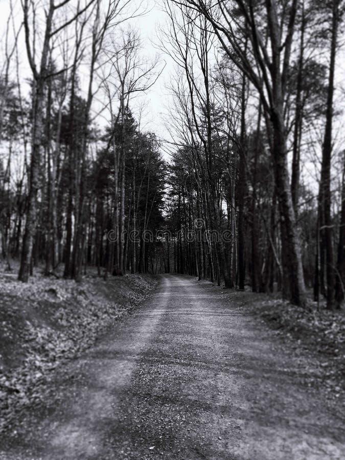 Zwart-witte weg royalty-vrije stock afbeeldingen