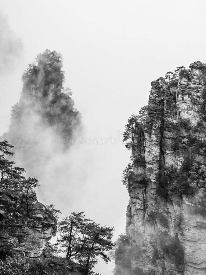 Zwart-witte Zhangjiajie royalty-vrije stock fotografie