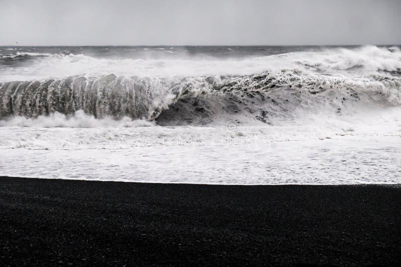 Zwart Zandstrand - IJsland stock afbeelding