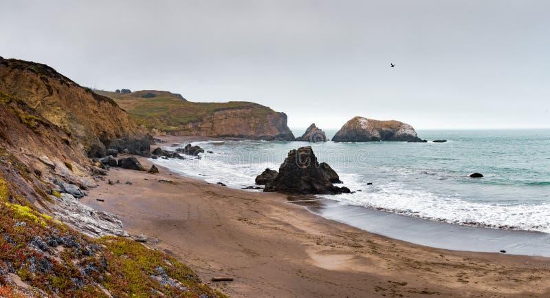 Zwart Zandstrand in Marin Headlands op een bewolkte dag, baaigebied de Noord- van San Francisco, Californië royalty-vrije stock fotografie