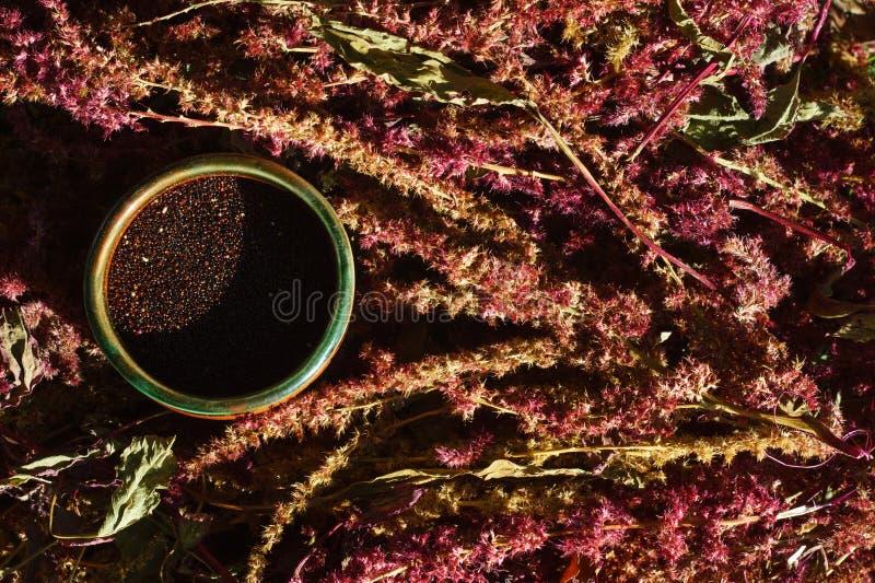 Zwarte amarantzaad en bloeiwijze in een kop stock fotografie