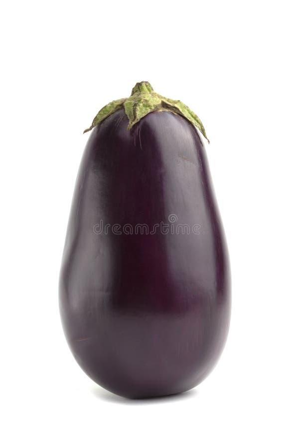Zwarte aubergine stock fotografie