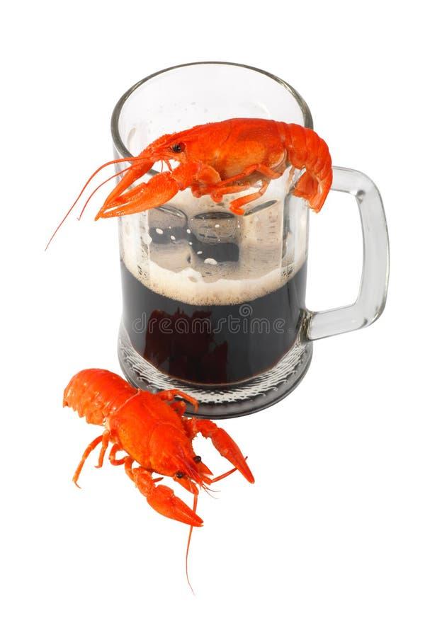 Zwarte bier en rivierkreeften stock foto's