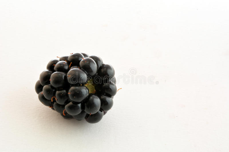 Zwarte Blackberry-close-up stock afbeeldingen