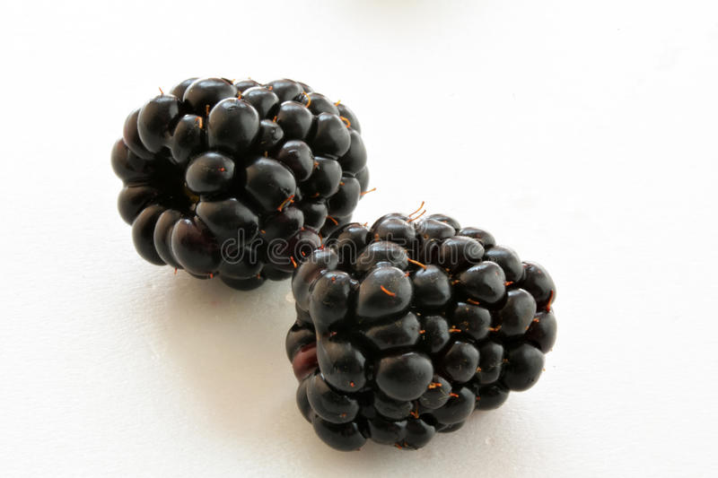 Zwarte Blackberry-close-up, macrofoto royalty-vrije stock afbeelding