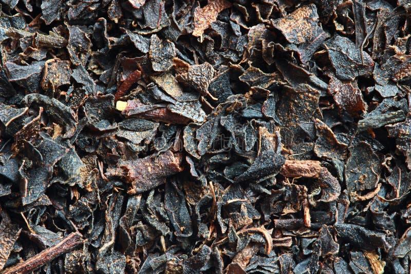 Zwarte bladthee stock afbeeldingen