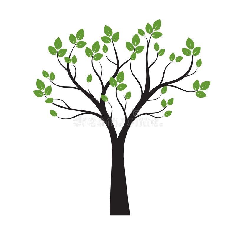 Zwarte Boom met Groene Bladeren op witte achtergrond Vector illustratie stock illustratie
