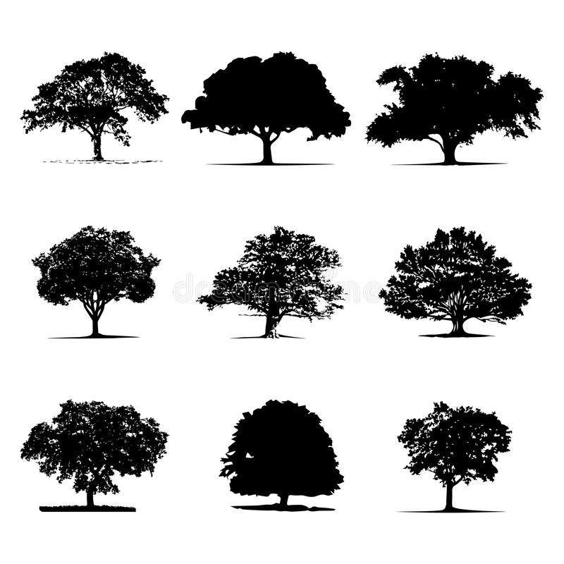 Zwarte boomsilhouetten op witte achtergrond vector illustratie