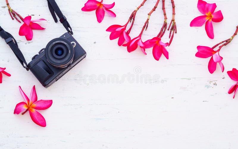 Zwarte camera met roze florabloemen op grunge witte houten royalty-vrije stock afbeelding