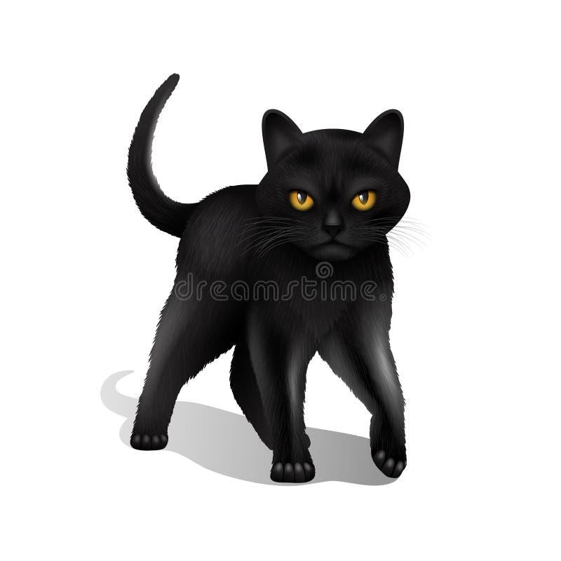 Zwarte Cat Realistic stock illustratie