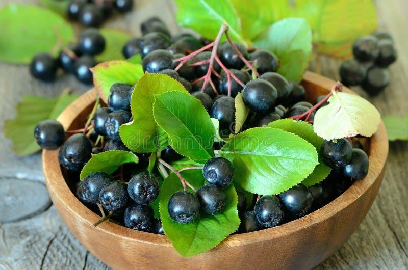 Zwarte chokeberry in bruine kom stock foto's