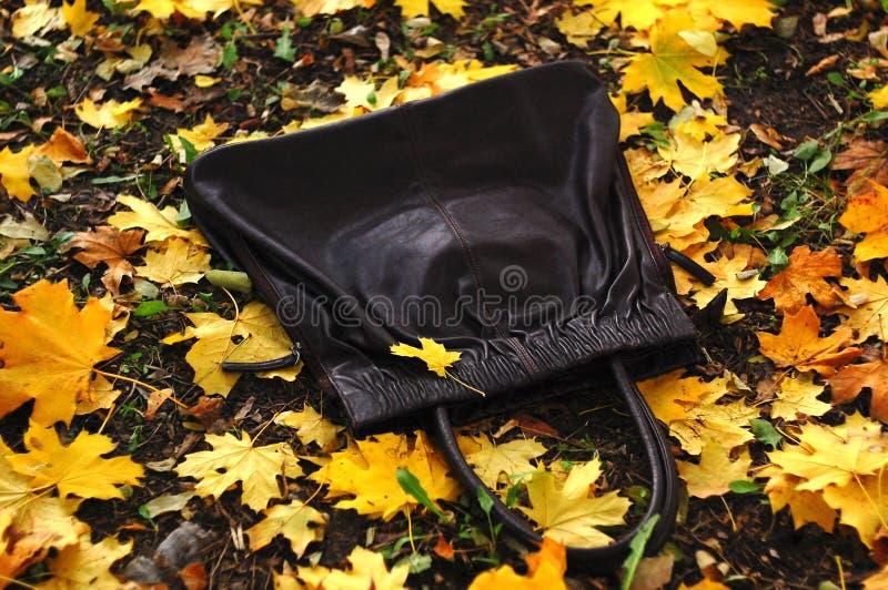 Zwarte die handtas ter plaatse door gouden gevallen de herfstbladeren wordt behandeld van esdoorn De stemming van de herfst Vele  royalty-vrije stock foto