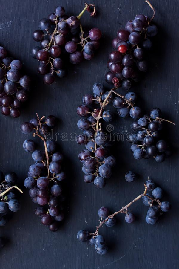 Zwarte Druiven stock fotografie