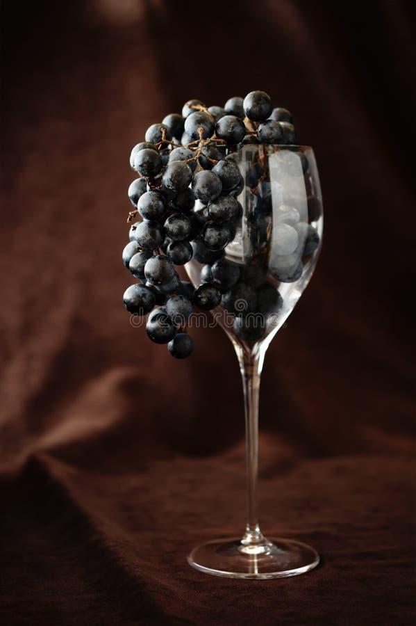 Zwarte druiven in wijnglas het hangen over tegen bruine achtergrond stock afbeelding