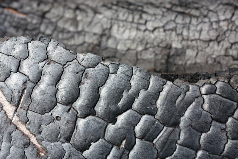 Zwarte grungeachtergrond Gebrande houten textuur en details Forest Fire royalty-vrije stock fotografie