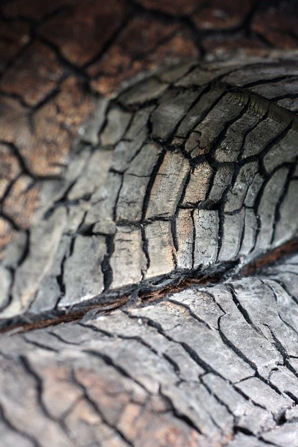 Zwarte grungeachtergrond Gebrande houten textuur en details Forest Fire royalty-vrije stock afbeeldingen