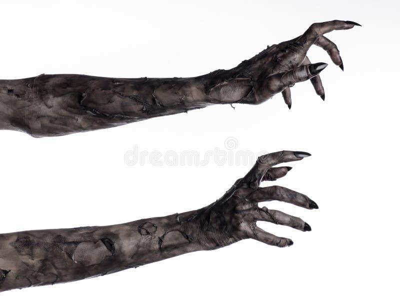 Zwarte hand van dood, volkomen het lopen, zombiethema, Halloween-thema, zombiehanden, witte achtergrond, brijhanden royalty-vrije stock fotografie