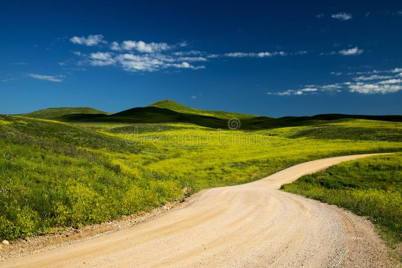 Zwarte Heuvels in Zuid-Dakota royalty-vrije stock afbeelding