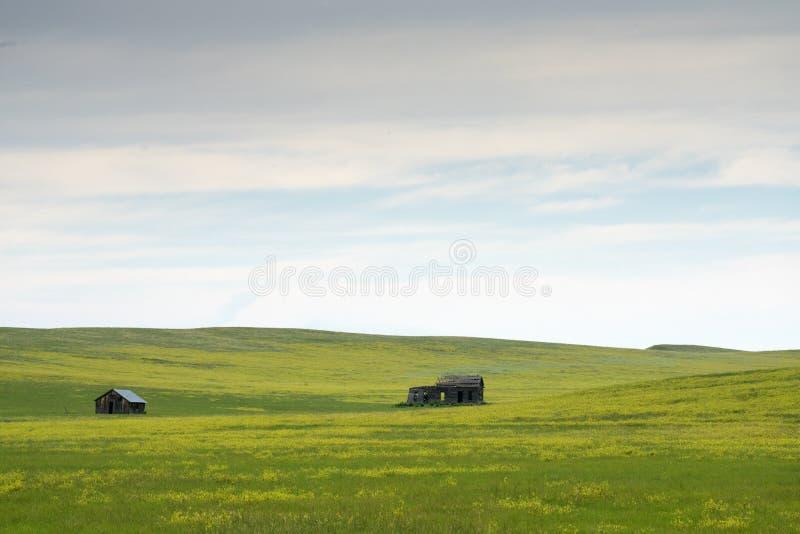 Zwarte Heuvels in Zuid-Dakota stock fotografie