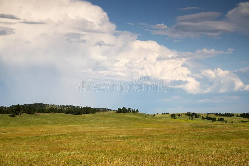 Zwarte Heuvels in Zuid-Dakota royalty-vrije stock afbeeldingen