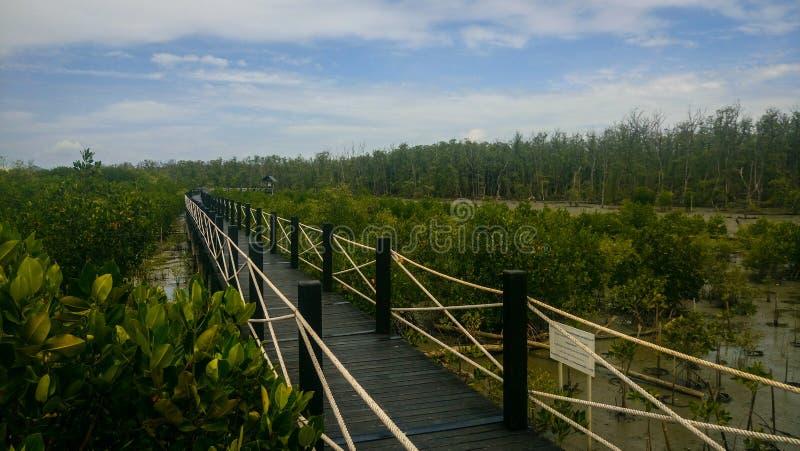 Zwarte houten brug royalty-vrije stock afbeeldingen