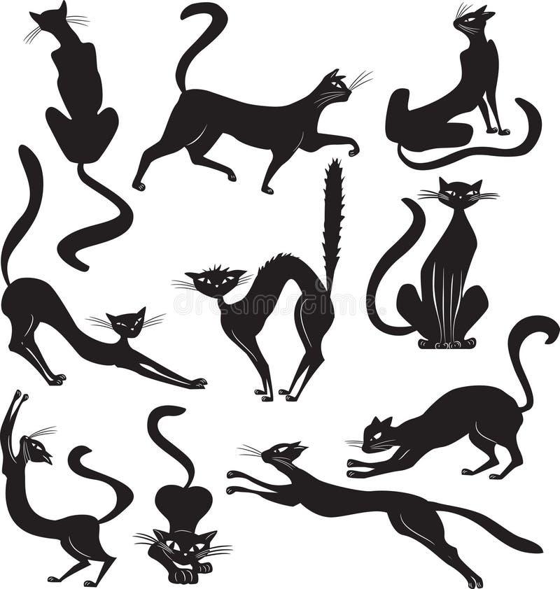 Zwarte kat stock illustratie