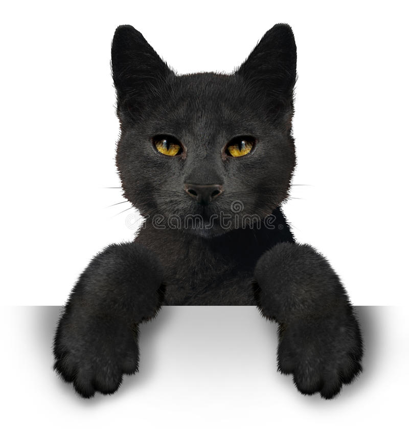 Zwarte kat royalty-vrije illustratie