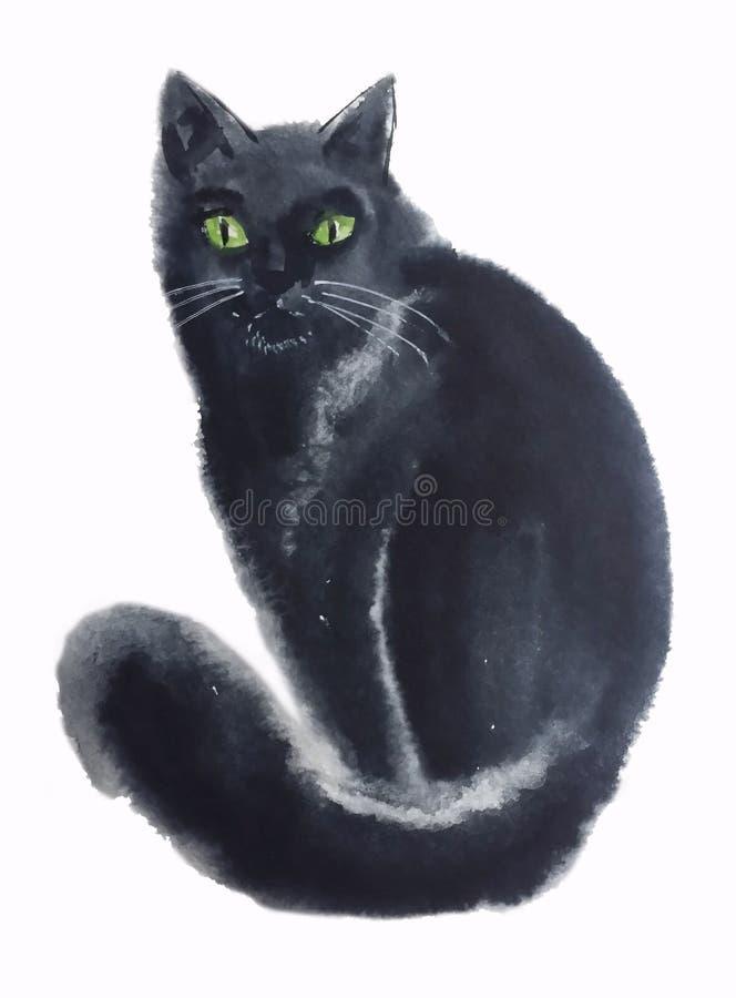 Zwarte kat met een pluizige staart royalty-vrije stock foto's