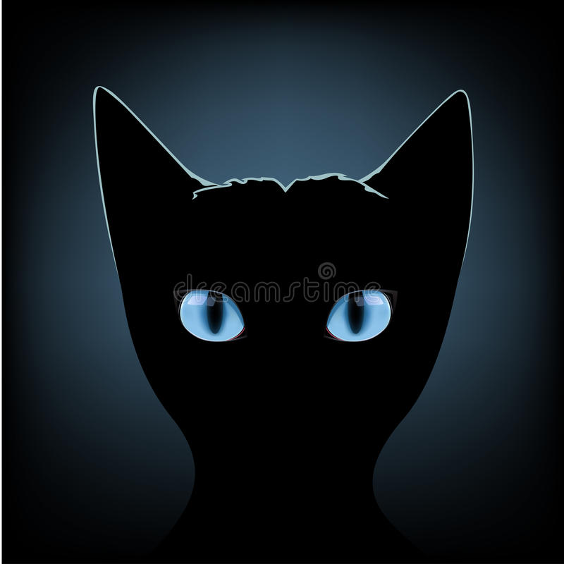Zwarte katten blauwe ogen royalty-vrije illustratie