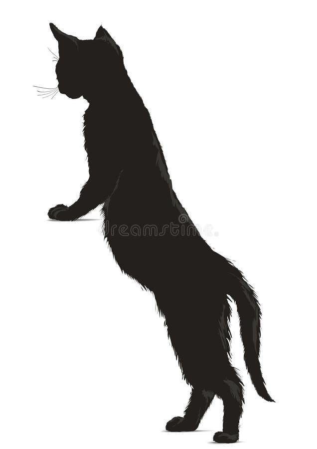 Zwarte kattensihouette stock illustratie
