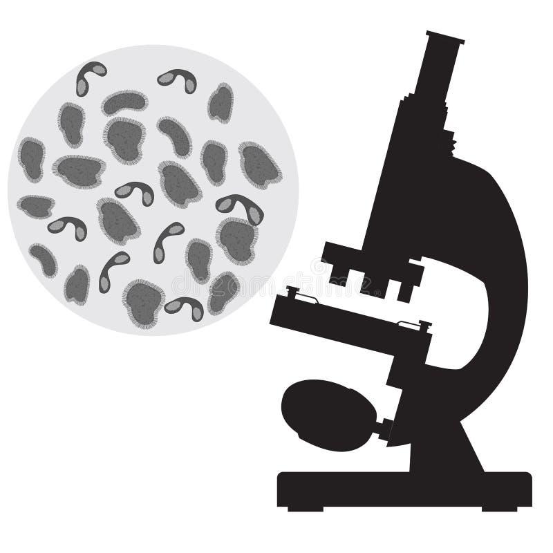 Zwarte medische microscoop en bacterie royalty-vrije illustratie