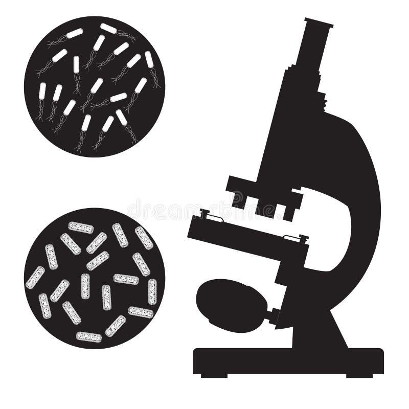 Zwarte medische microscoop en bacterie stock illustratie