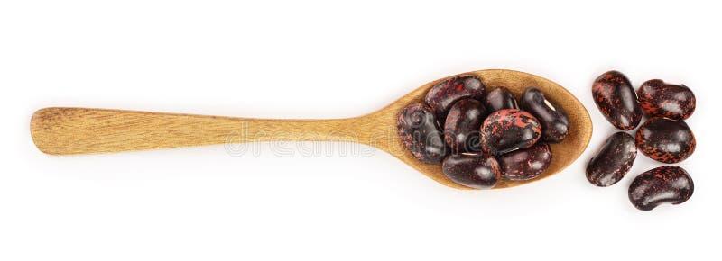 Zwarte nierboon in houten die lepel op witte achtergrond wordt geïsoleerd Hoogste mening Vlak leg vector illustratie
