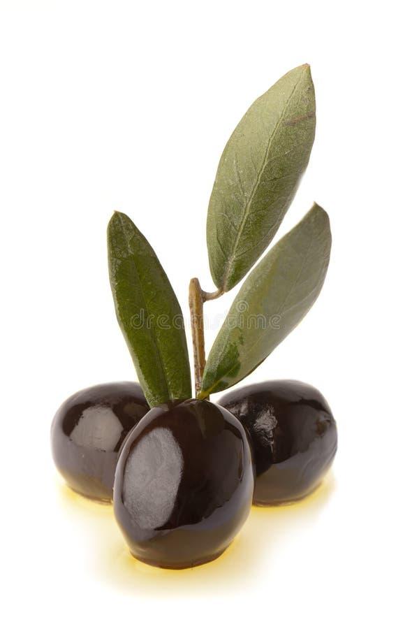 Zwarte olijven en olie royalty-vrije stock afbeelding