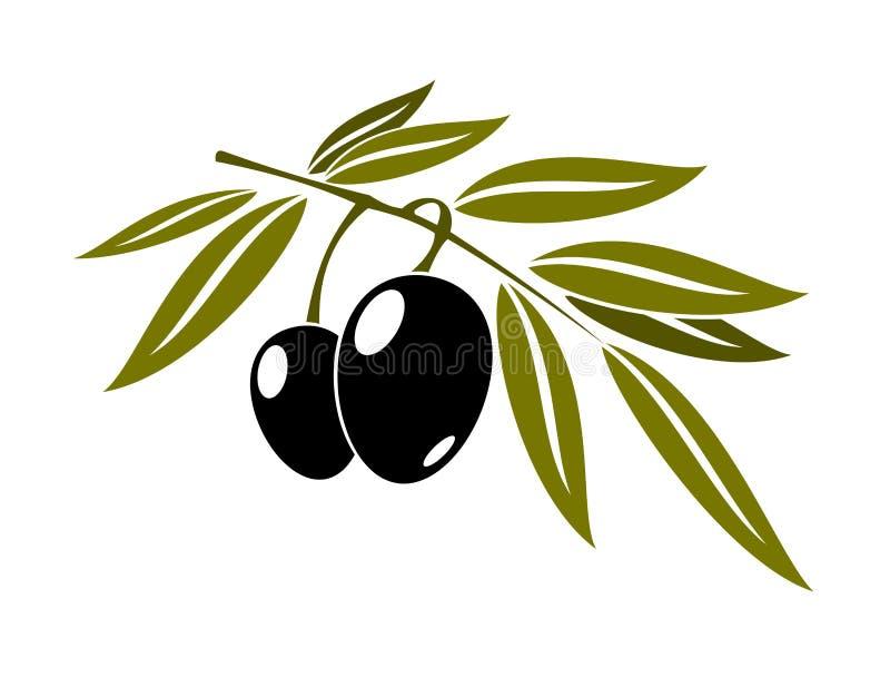 Zwarte olijventak met blad stock illustratie
