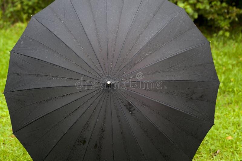 Zwarte paraplu met dalingen royalty-vrije stock afbeelding