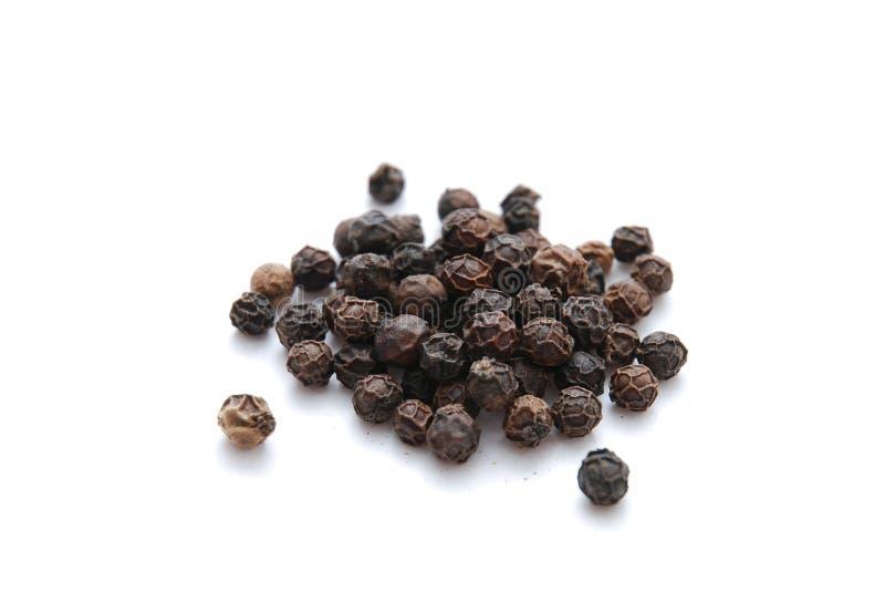 Zwarte peper stock fotografie