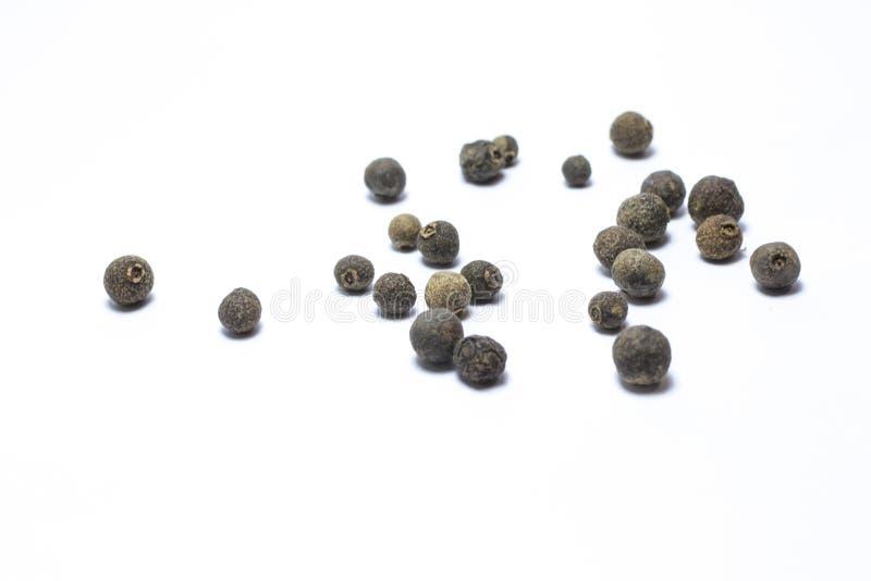 Zwarte peper royalty-vrije stock afbeelding