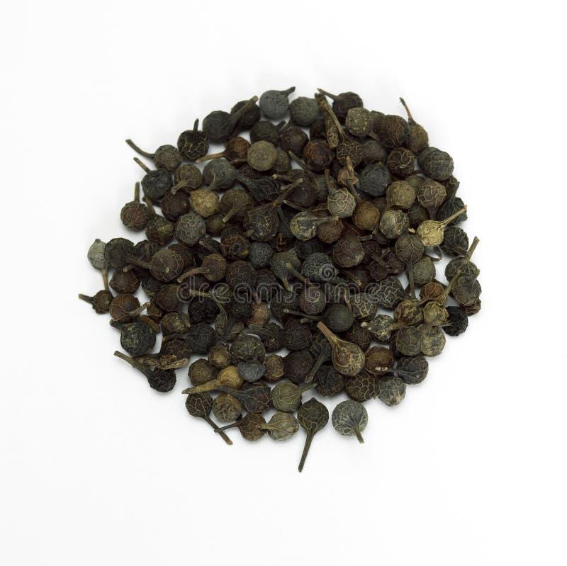 Zwarte peper, peduncle peper, close-up stock afbeeldingen