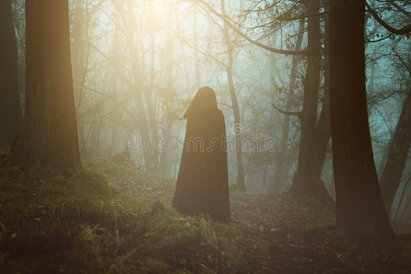 Zwarte persoon met een kap in een surreal bos stock afbeelding